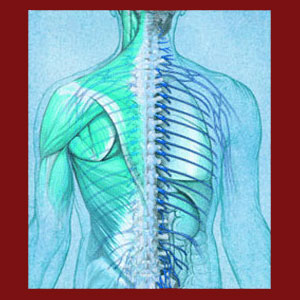 Facet Joint Syndrome Cure